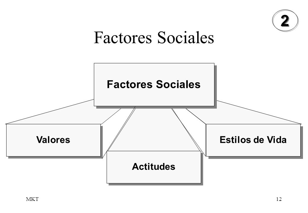 Factores Sociales 2 Factores Sociales Valores Estilos de Vida