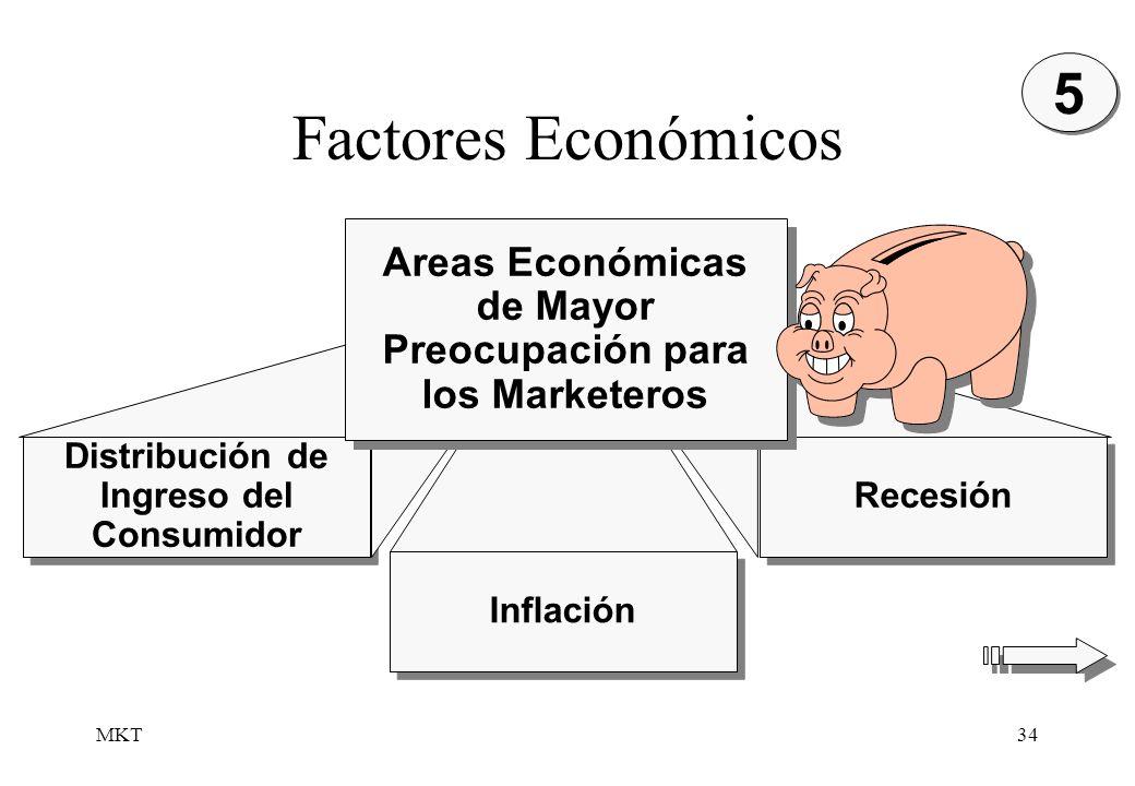 5Factores Económicos. Areas Económicas de Mayor Preocupación para los Marketeros. Distribución de Ingreso del Consumidor.