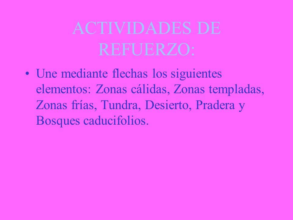 ACTIVIDADES DE REFUERZO: