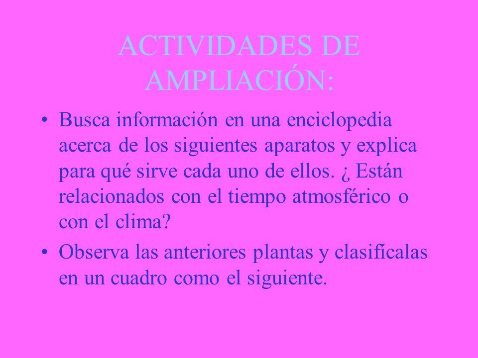 ACTIVIDADES DE AMPLIACIÓN: