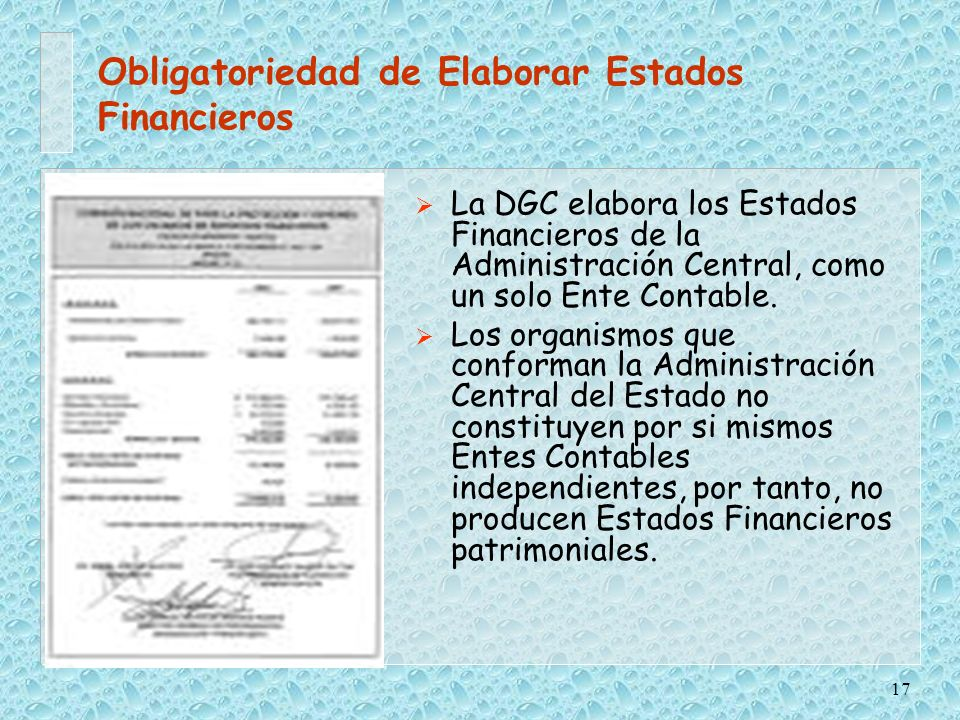 Obligatoriedad de Elaborar Estados Financieros
