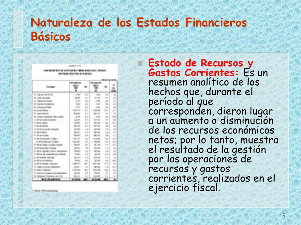 Naturaleza de los Estados Financieros Básicos