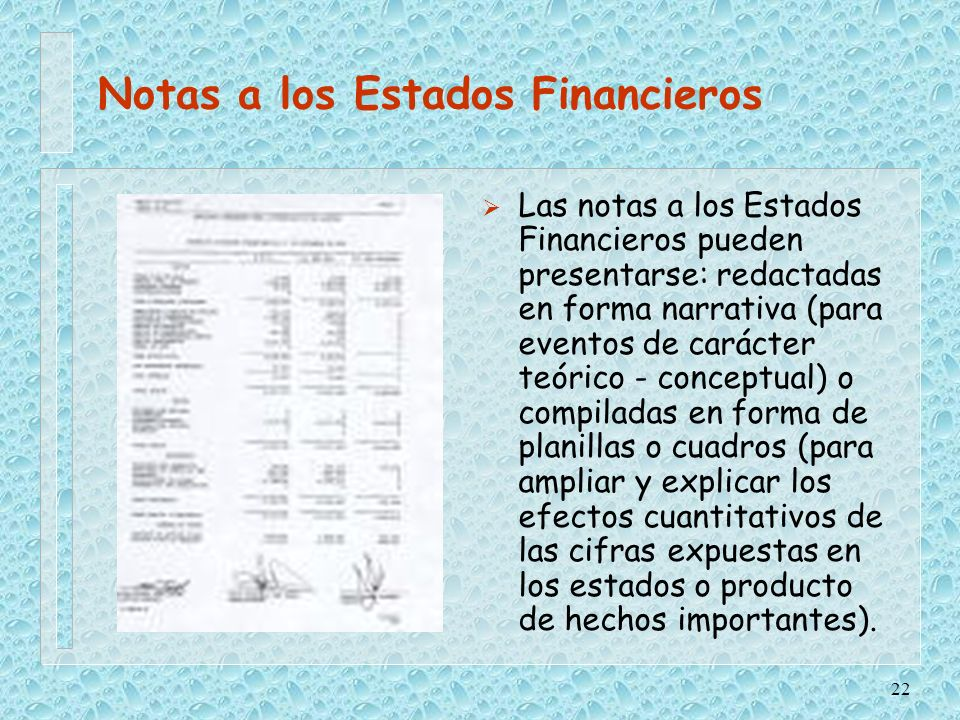 Notas a los Estados Financieros