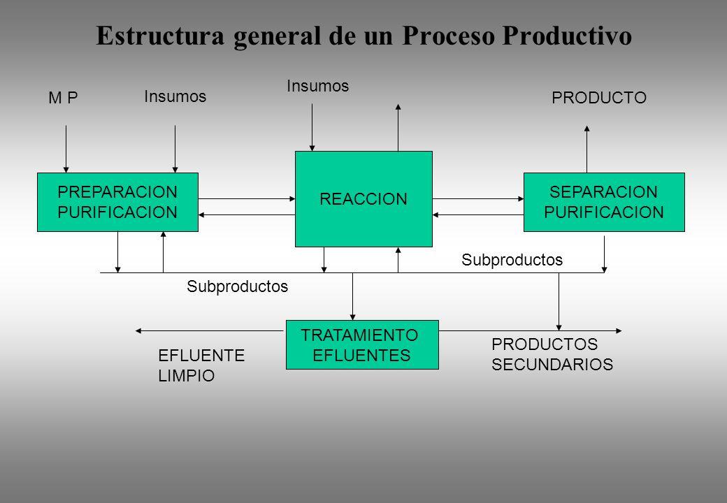 Estructura general de un Proceso Productivo