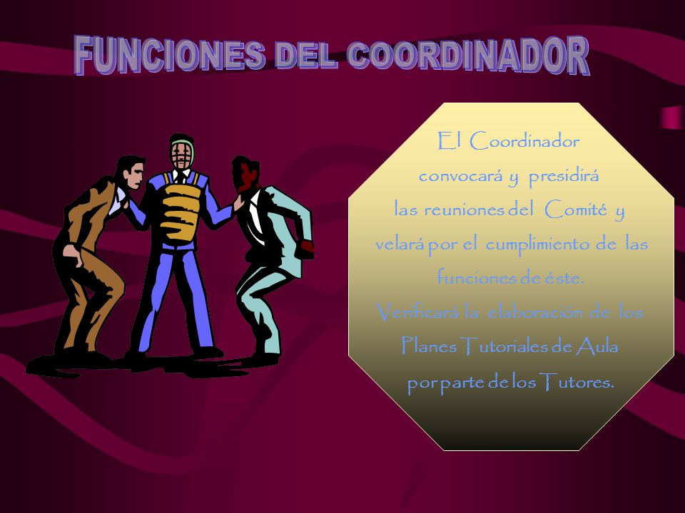 FUNCIONES DEL COORDINADOR
