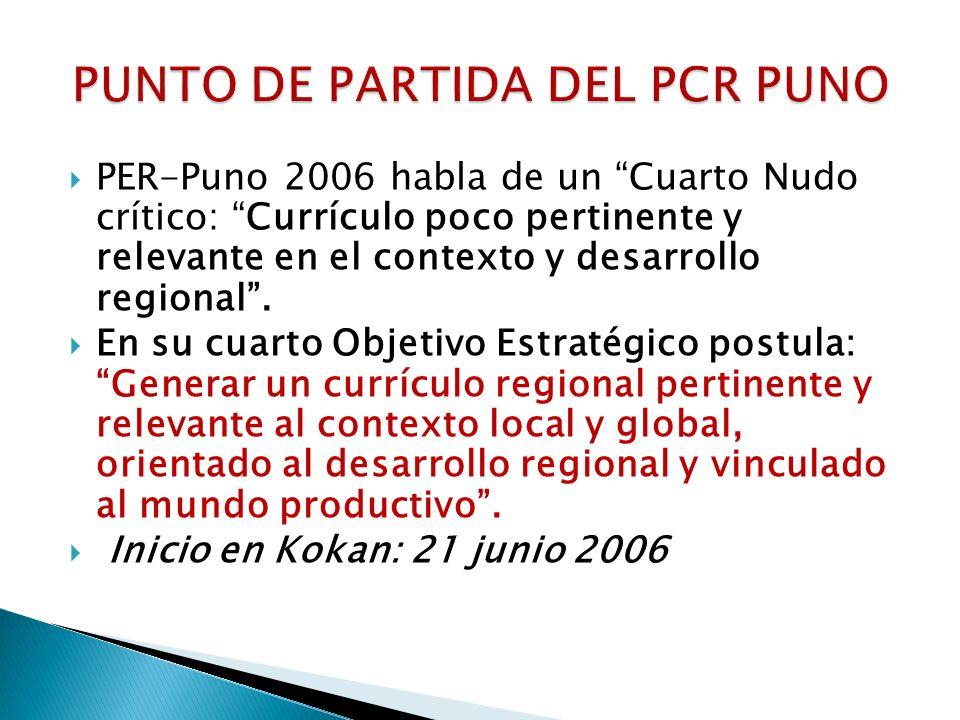 PUNTO DE PARTIDA DEL PCR PUNO