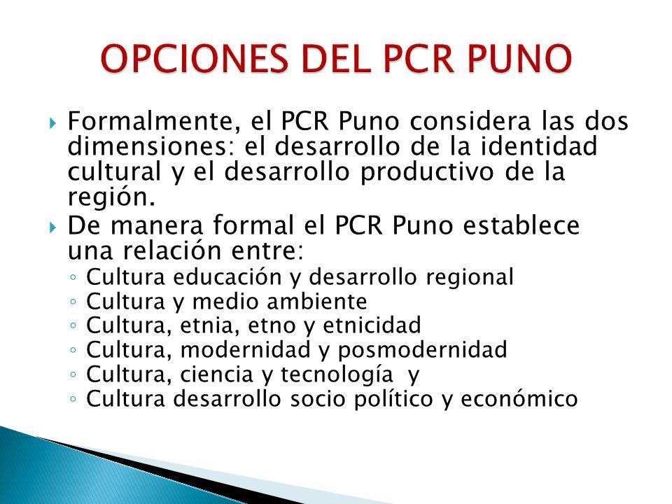 OPCIONES DEL PCR PUNO