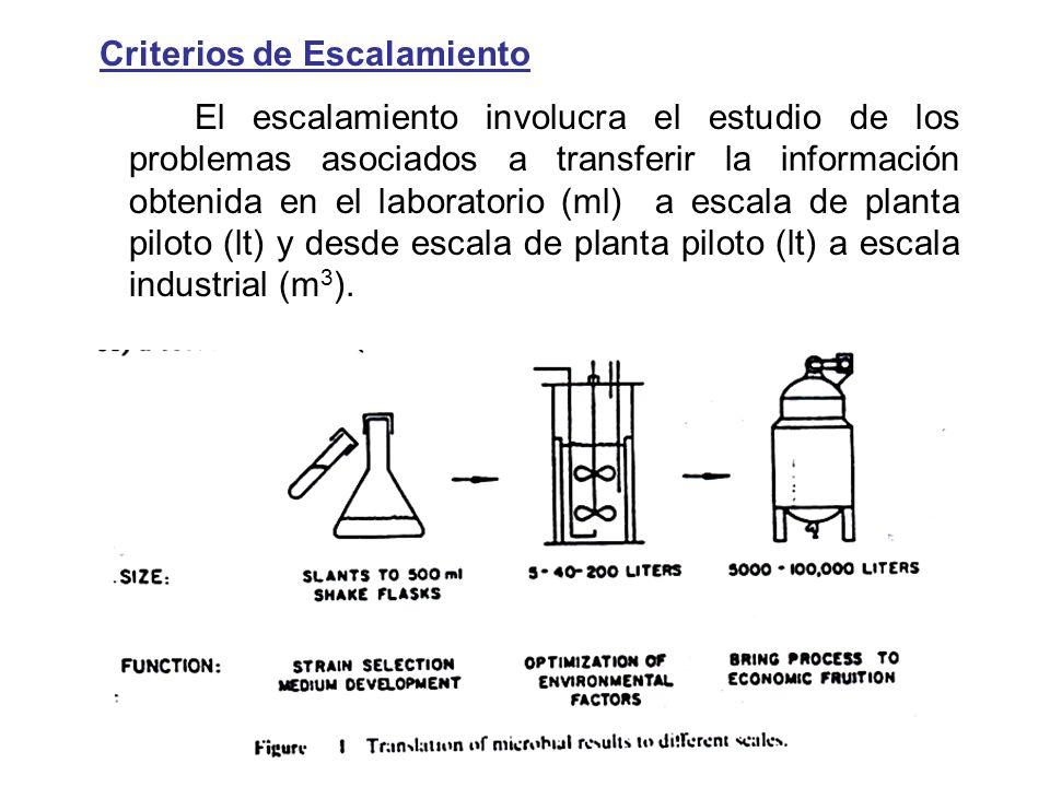 Criterios de Escalamiento El escalamiento involucra el estudio de los problemas asociados a transferir la información obtenida en el laboratorio (ml) a escala de planta piloto (lt) y desde escala de planta piloto (lt) a escala industrial (m3).
