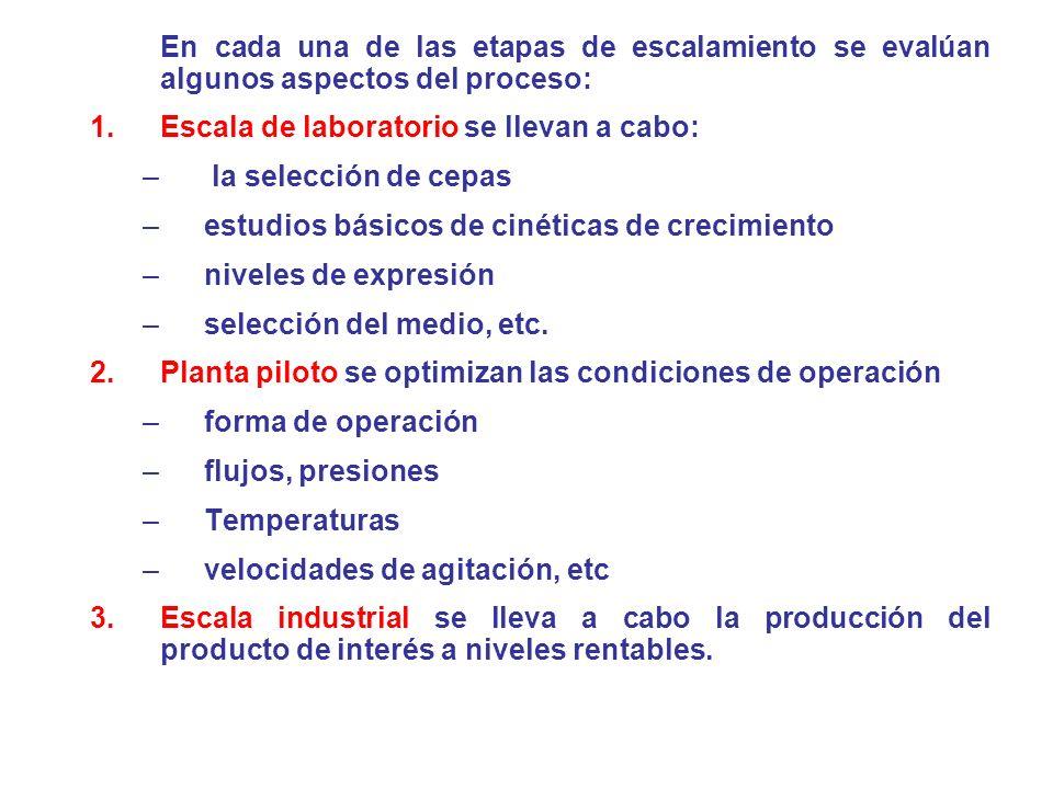 En cada una de las etapas de escalamiento se evalúan algunos aspectos del proceso: