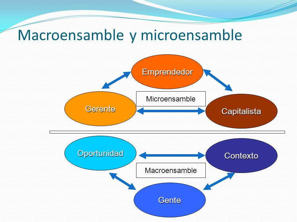 Macroensamble y microensamble