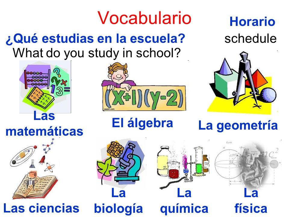 Vocabulario Horario ¿Qué estudias en la escuela schedule