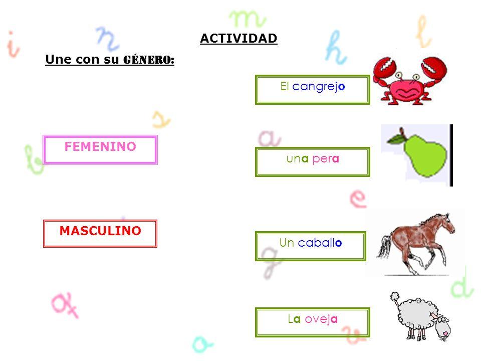 ACTIVIDAD Une con su Género: El cangrejo FEMENINO una pera MASCULINO Un caballo La oveja