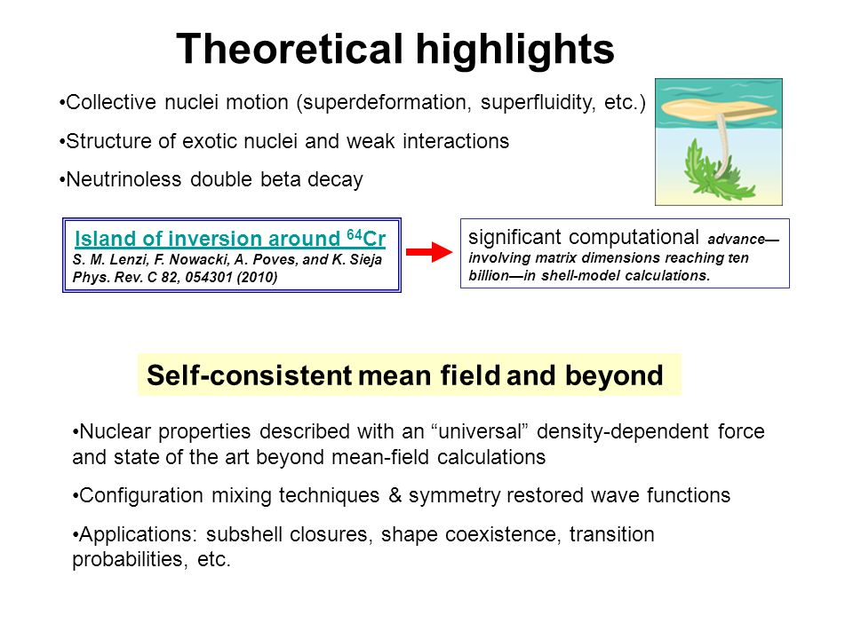Theoretical highlights