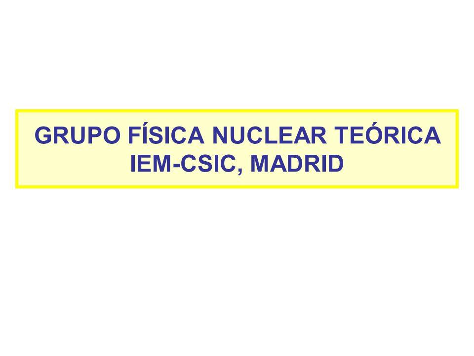 GRUPO FÍSICA NUCLEAR TEÓRICA IEM-CSIC, MADRID