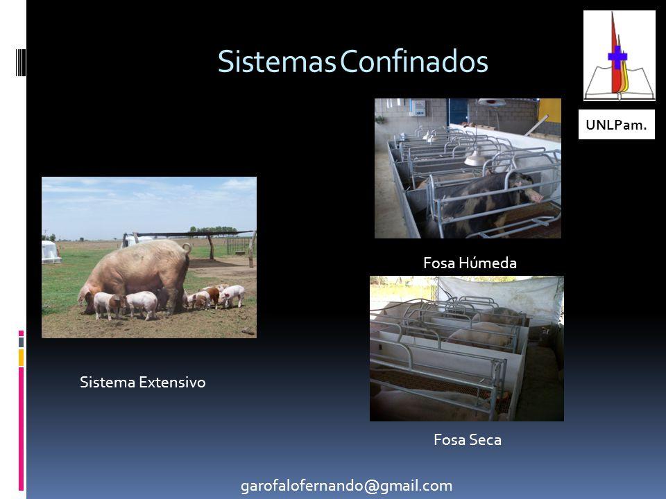 Sistemas Confinados Fosa Húmeda Sistema Extensivo Fosa Seca