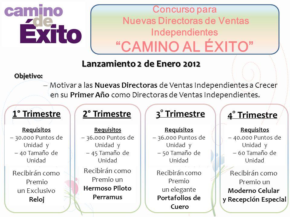 Concurso para Nuevas Directoras de Ventas Independientes CAMINO AL ÉXITO