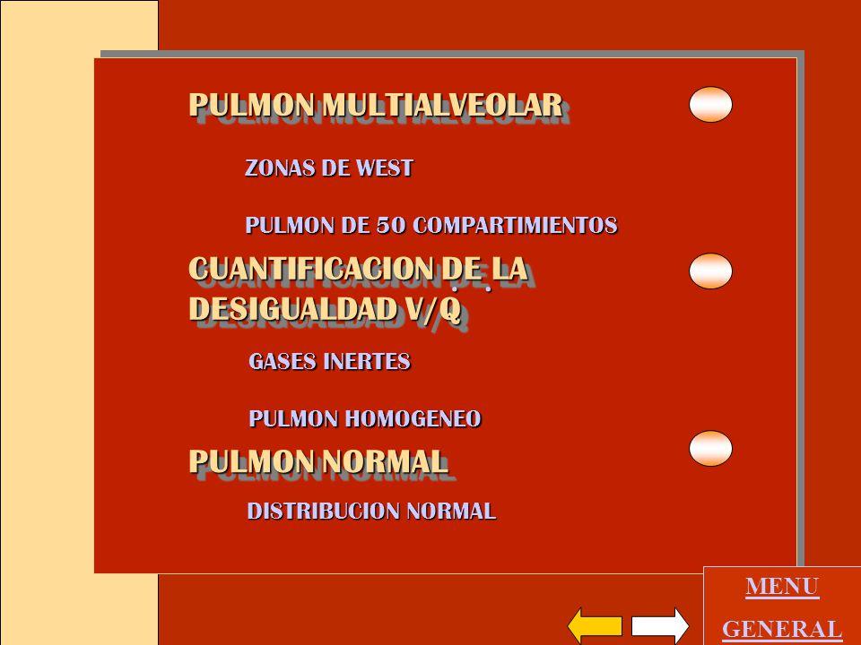 PULMON MULTIALVEOLAR CUANTIFICACION DE LA DESIGUALDAD V/Q