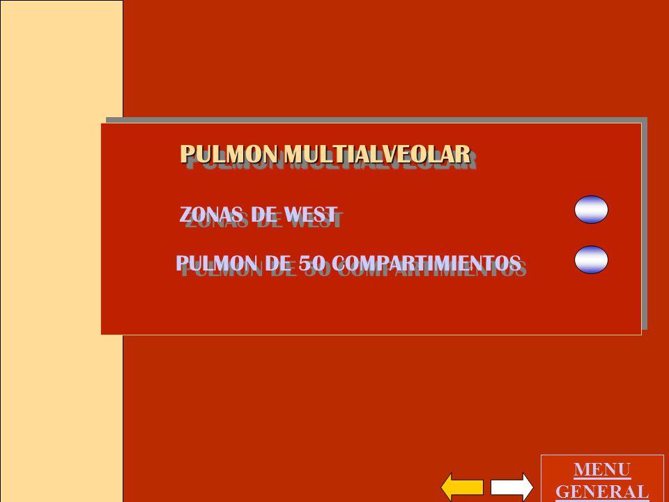 PULMON DE 50 COMPARTIMIENTOS