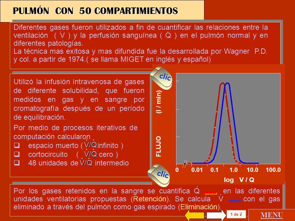 PULMÓN CON 50 COMPARTIMIENTOS
