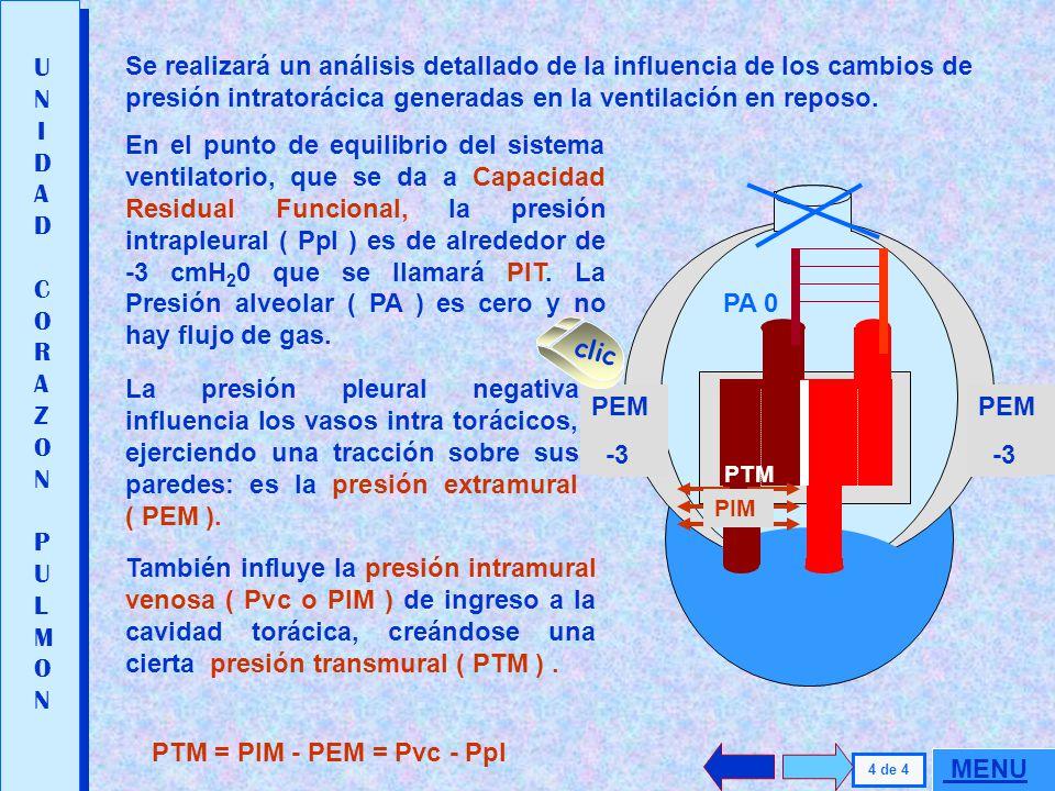 Se realizará un análisis detallado de la influencia de los cambios de presión intratorácica generadas en la ventilación en reposo.