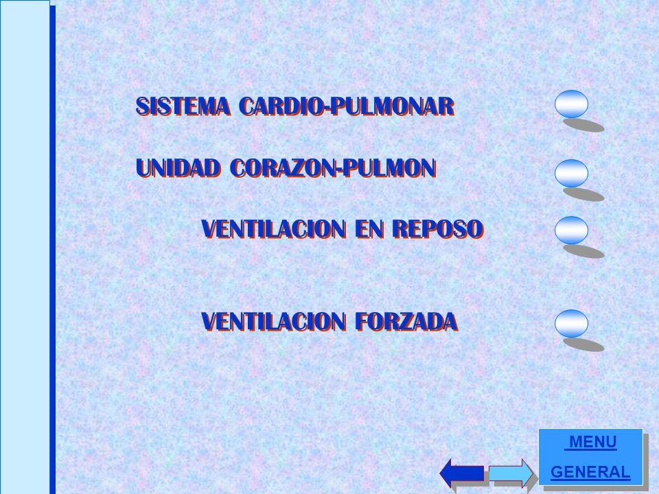 SISTEMA CARDIO-PULMONAR UNIDAD CORAZON-PULMON VENTILACION EN REPOSO