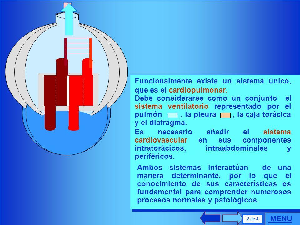. Funcionalmente existe un sistema único, que es el cardiopulmonar.