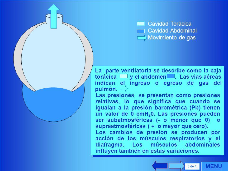 . Cavidad Torácica Cavidad Abdominal Movimiento de gas