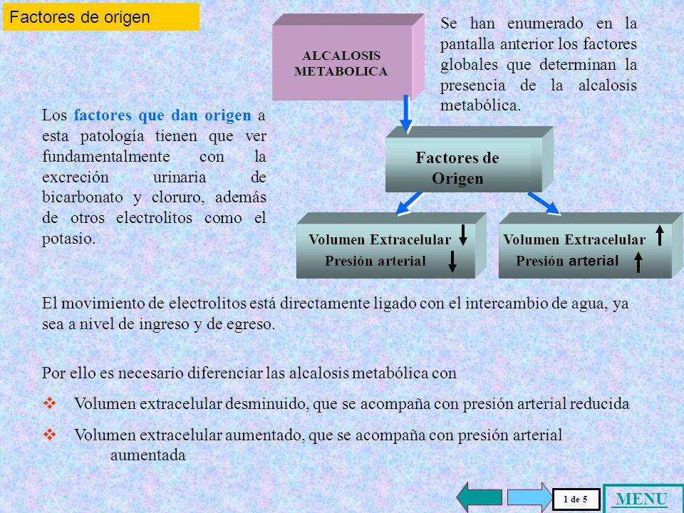 Factores de origen Se han enumerado en la pantalla anterior los factores globales que determinan la presencia de la alcalosis metabólica.