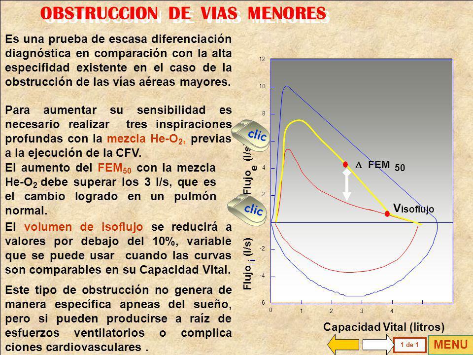 OBSTRUCCION DE VIAS MENORES
