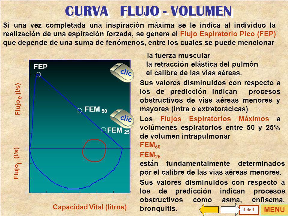 CURVA FLUJO - VOLUMEN