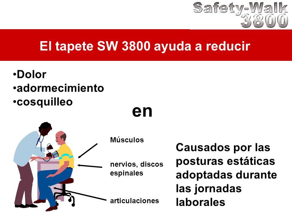 en El tapete SW 3800 ayuda a reducir Dolor adormecimiento cosquilleo
