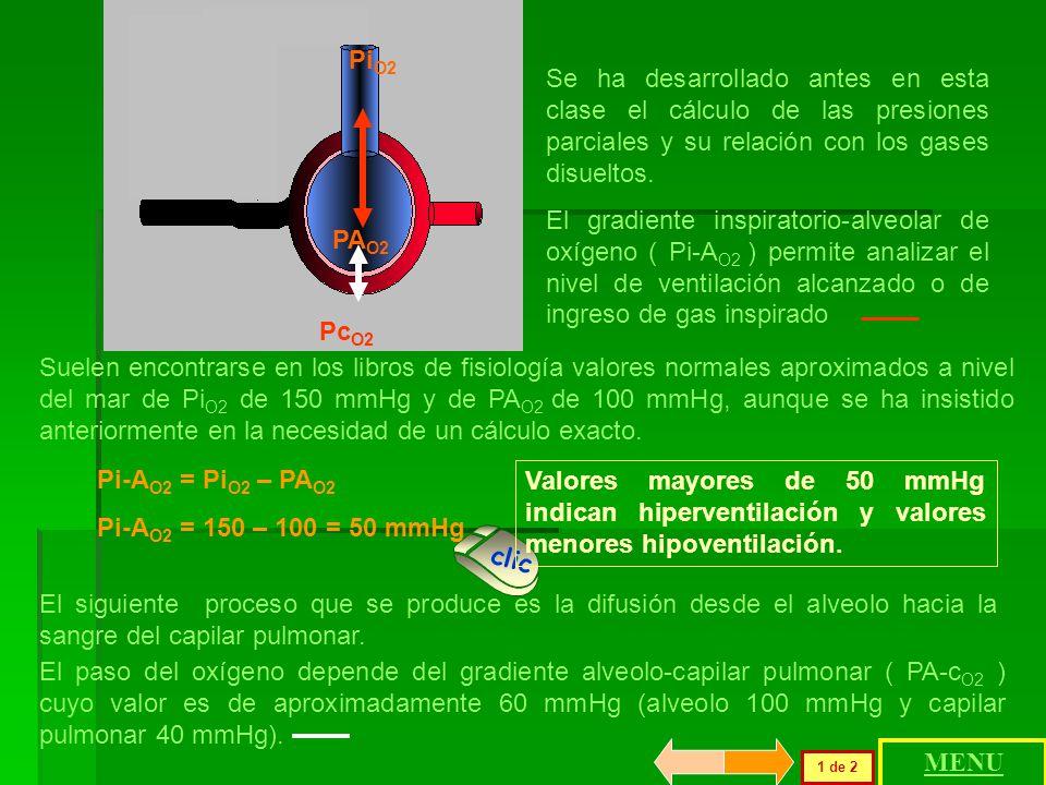 PiO2 PAO2. Se ha desarrollado antes en esta clase el cálculo de las presiones parciales y su relación con los gases disueltos.