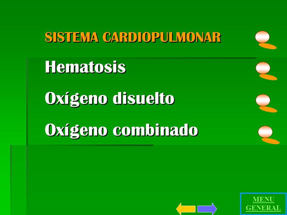Hematosis Oxígeno disuelto Oxígeno combinado SISTEMA CARDIOPULMONAR