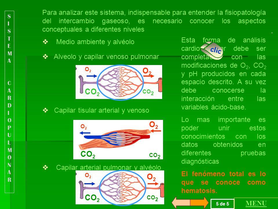 Para analizar este sistema, indispensable para entender la fisiopatología del intercambio gaseoso, es necesario conocer los aspectos conceptuales a diferentes niveles