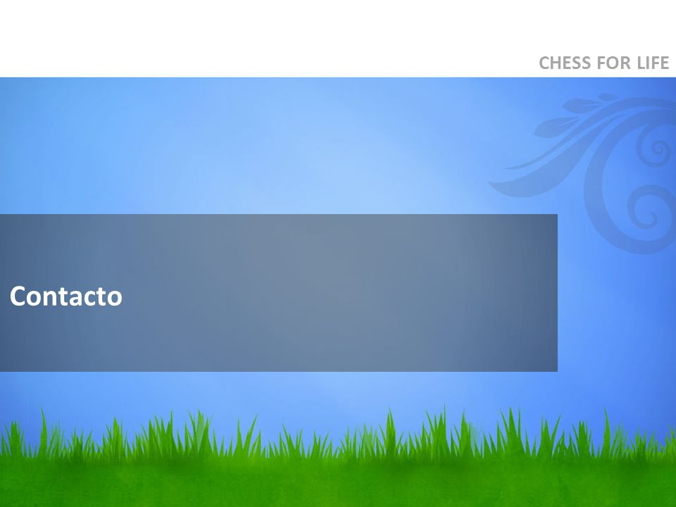 CHESS FOR LIFE Contacto