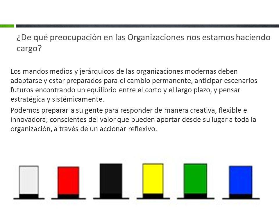 ¿De qué preocupación en las Organizaciones nos estamos haciendo cargo