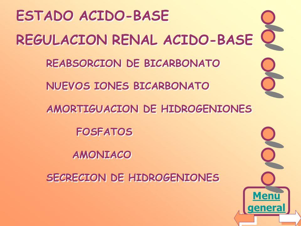 REGULACION RENAL ACIDO-BASE