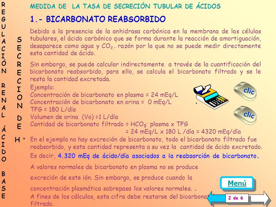 REGULACIÓN RENAL ÁCIDO BASE