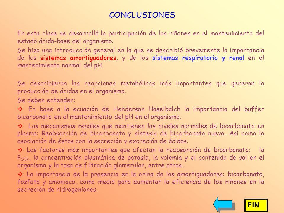 CONCLUSIONES En esta clase se desarrolló la participación de los riñones en el mantenimiento del estado ácido-base del organismo.