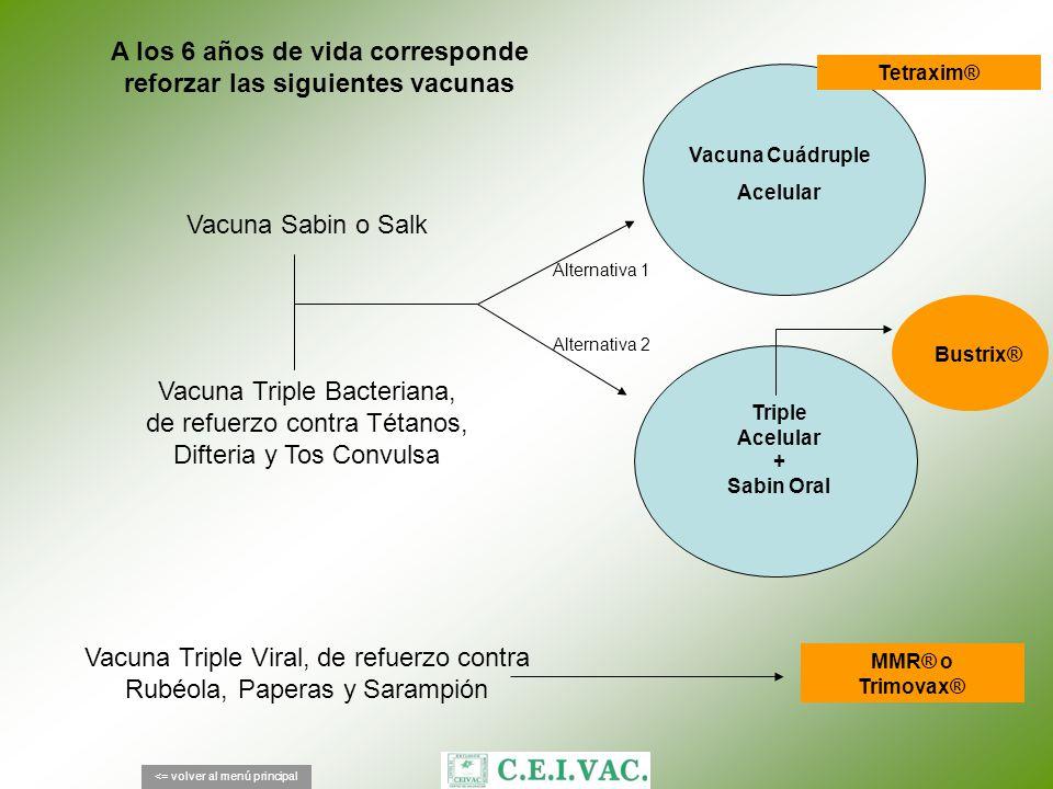 A los 6 años de vida corresponde reforzar las siguientes vacunas