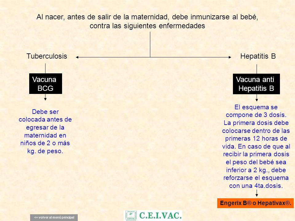 Engerix B® o Hepativax®.