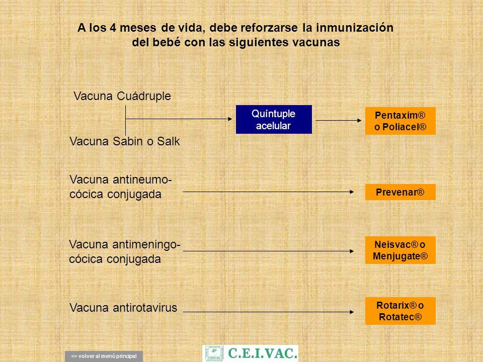 A los 4 meses de vida, debe reforzarse la inmunización