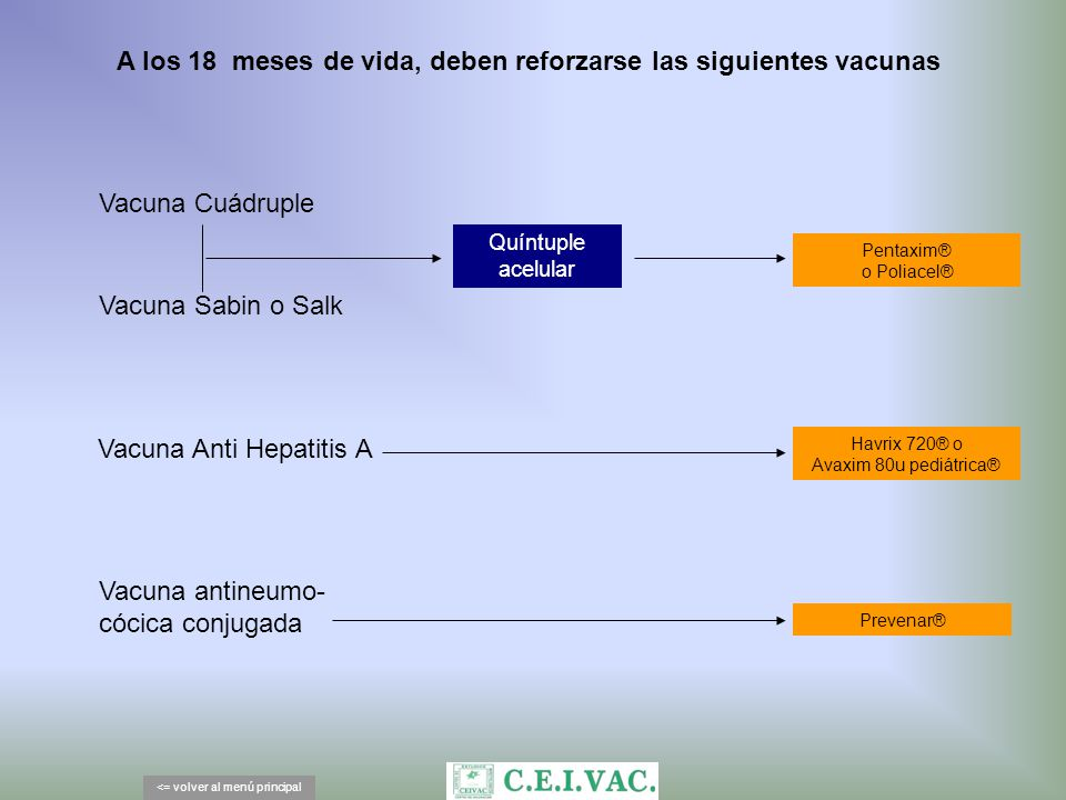 A los 18 meses de vida, deben reforzarse las siguientes vacunas