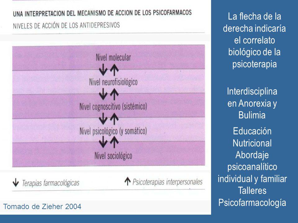 Interdisciplina en Anorexia y Bulimia