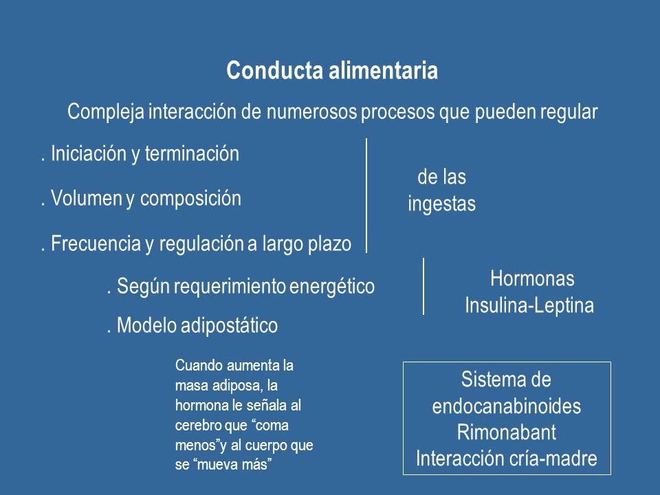 Conducta alimentaria Compleja interacción de numerosos procesos que pueden regular. . Iniciación y terminación.