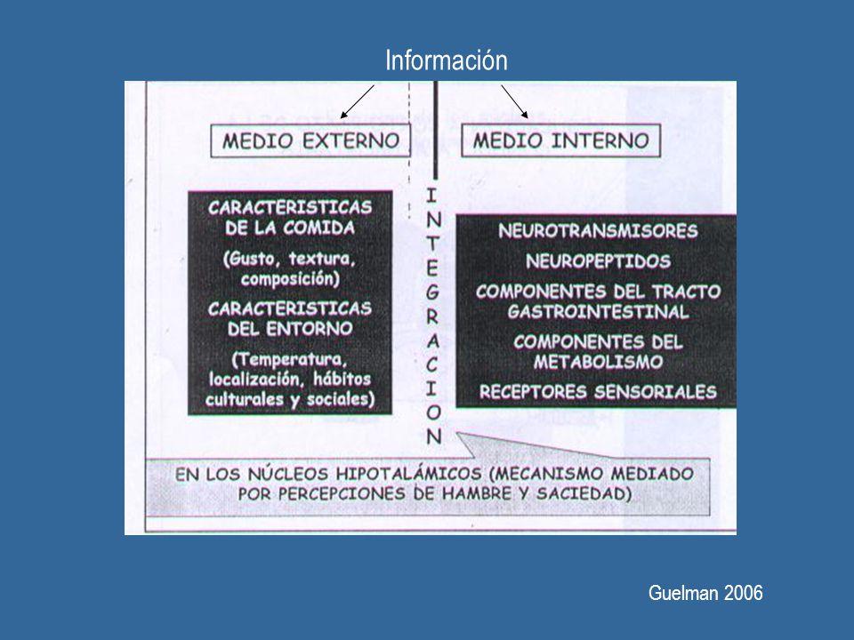 Información Guelman 2006