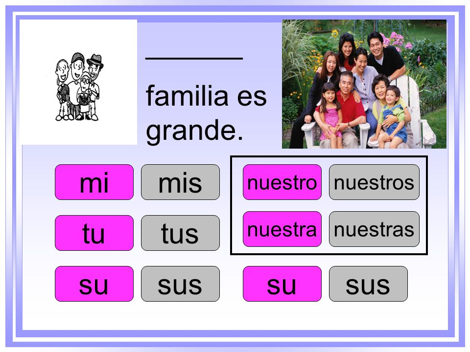 ______ familia es grande. mi mis tu tus su sus su sus nuestro nuestros
