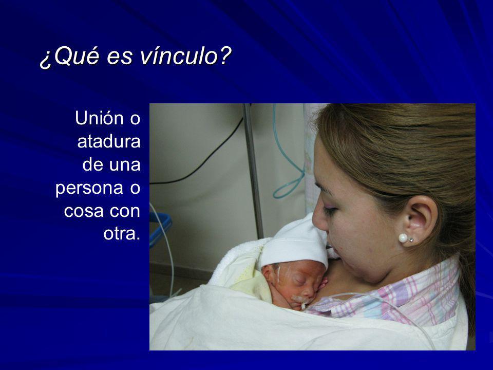 ¿Qué es vínculo Unión o atadura de una persona o cosa con otra.