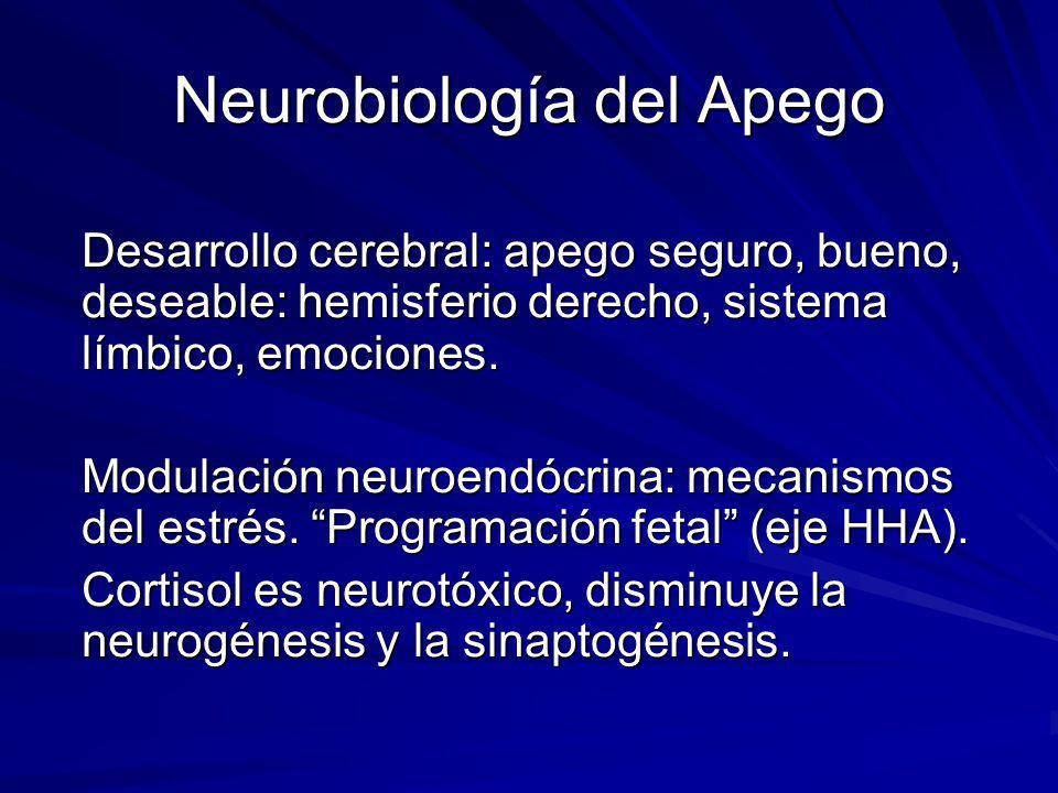 Neurobiología del Apego