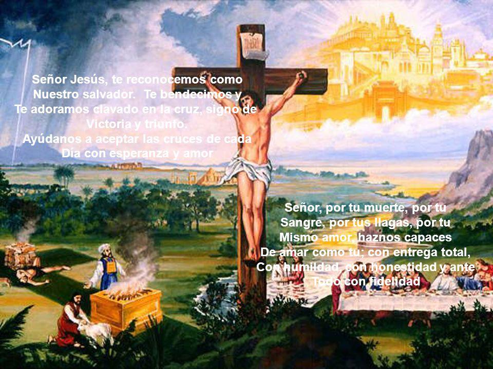Señor Jesús, te reconocemos como Nuestro salvador. Te bendecimos y